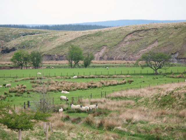 Pastures in the Irthing valley