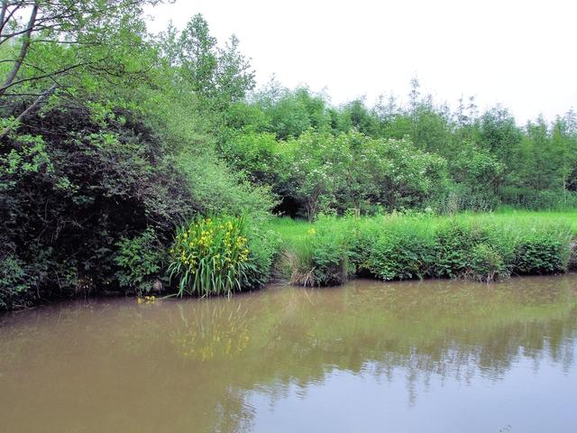 Whitchurch - Llangollen Canal north of Danson's Bridge