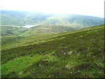 NT0428 : South west slopes of Coulter Fell by Gordon Brown