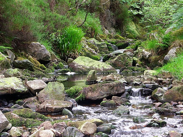 Glenevin valley and stream