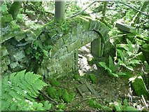SE0023 : Part of a ruined mill, Cragg Vale, Mytholmroyd by Humphrey Bolton
