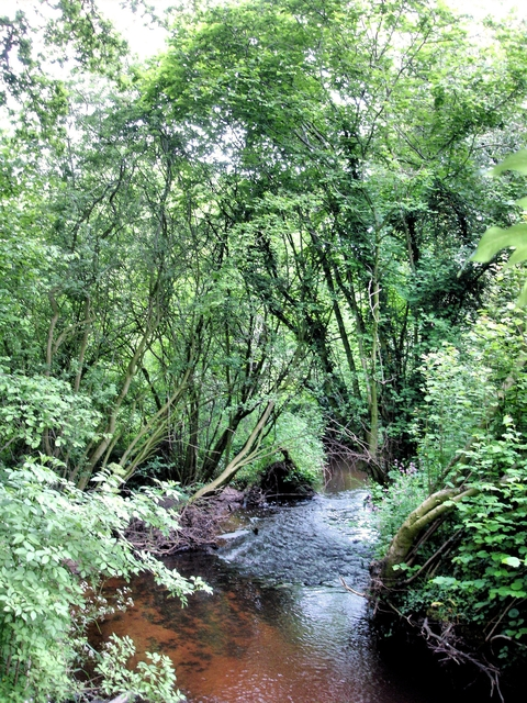 Wych Brook - three counties (and two countries) join