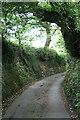 SW7840 : A Sunken Lane by Tony Atkin