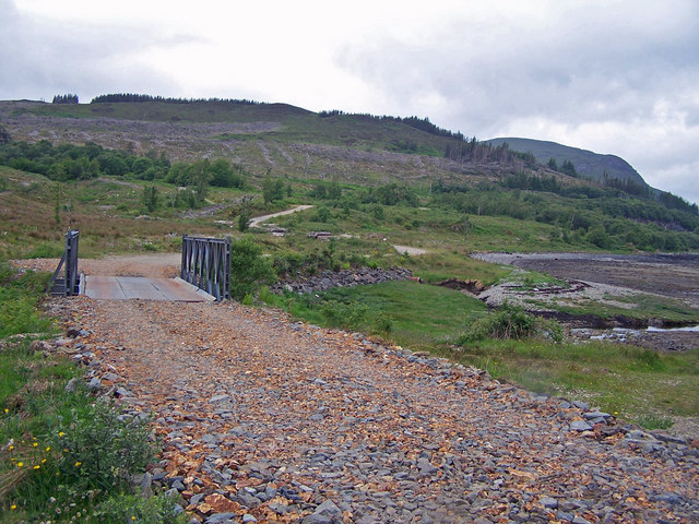 Forestry track and bridge