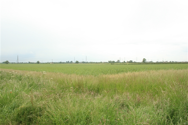 Farmland off Rampton Road