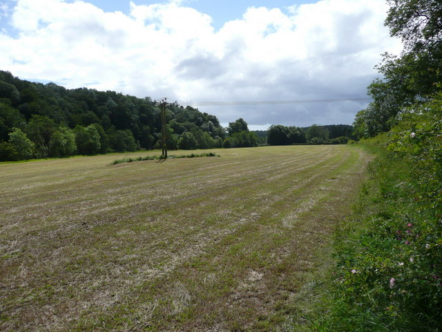 Field along side the River Ayr