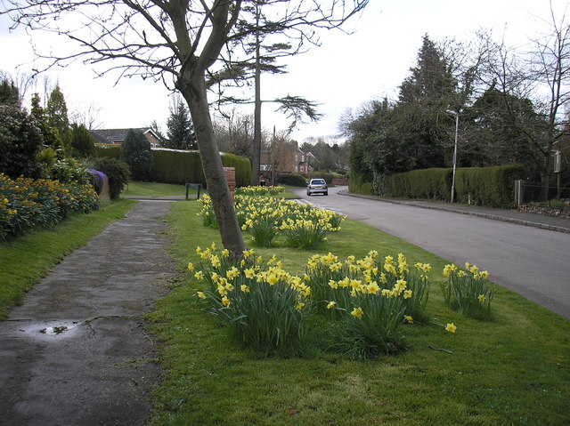 Church Road in spring