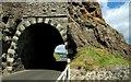 D3905 : The Black Arch near Larne : Week 24