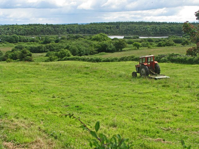 Tractor and field with forest on the horizon