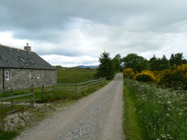 Cottage on the Bach Road