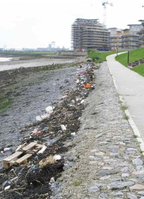 Riverside Walk Flotsam at Greenhithe