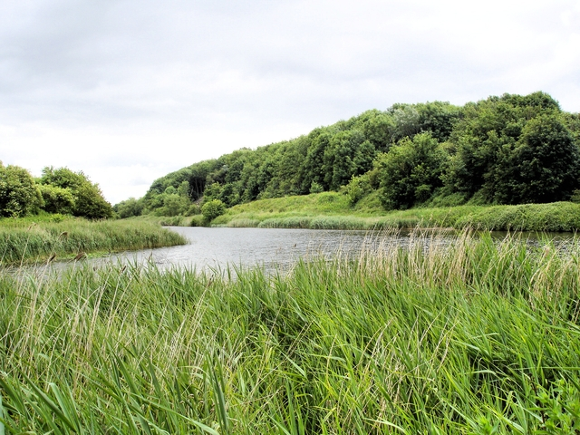 Anderton Nature Park - view up the River Weaver