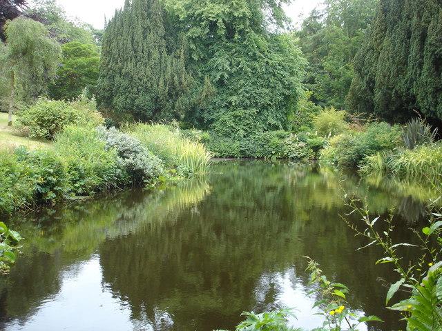 Pond at Benvarden