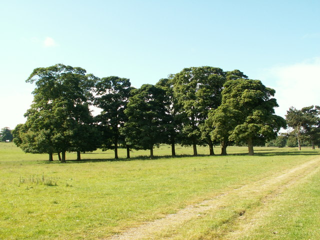Barnsley Boundary Walk below Litherop Road