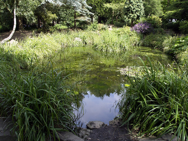 Pickering park ornamental pond andy beecroft geograph for Ornamental pond