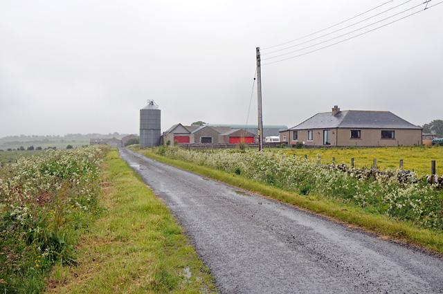Laid Farm
