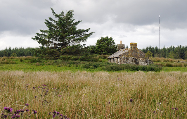 Derelict Croft at Blood Moss