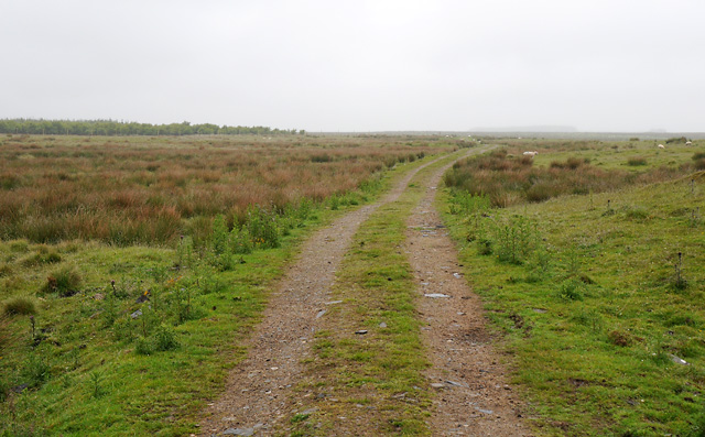 Track to Wester Watten Moss