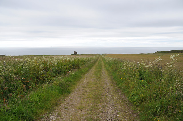 Track to Forse Castle