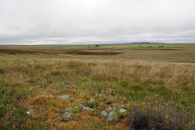 Moorland near Brae of Tormore