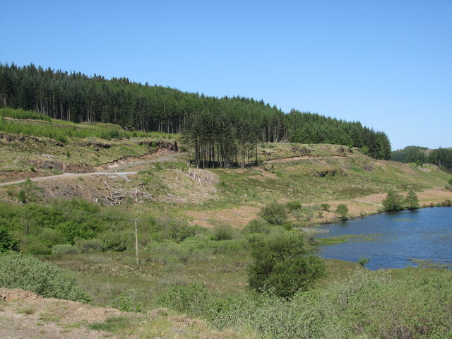 Forestry by Loch an Tor