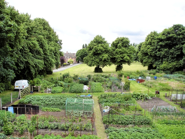 Allotment gardens and recreation area beside Birdcage Walk