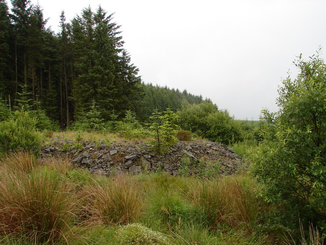 Black Hill, Laurieston Forest