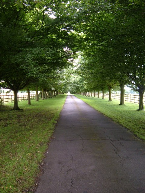 Driveway, Thornton Hall
