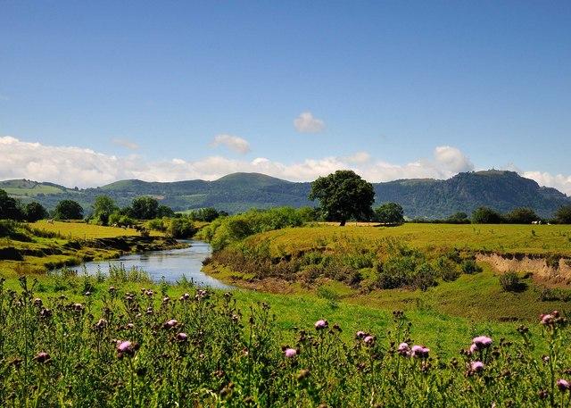 Afon Efyrnwy - River Vyrnwy, Looking South