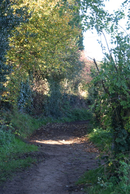 Lutley Lane
