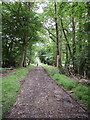 SU7589 : Woodland track from Southend into Stonor Park by David Hawgood