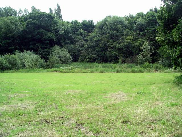 Field, Nuthall