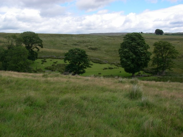 Enclosure at Cwm Moel