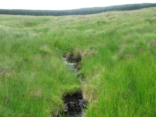 Auchincally Burn