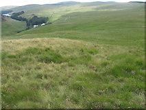 NS6206 : Yarngallows Knowe towards Afton Reservoir by Chris Wimbush