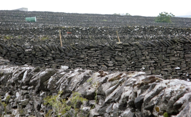 Dry stone walls south of Litton