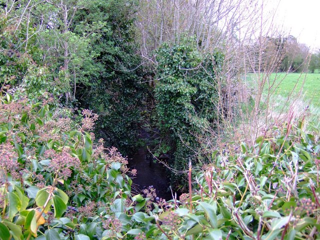 Source of the River Boyne