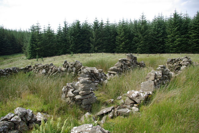 Sheepfold NW of Laggangarn