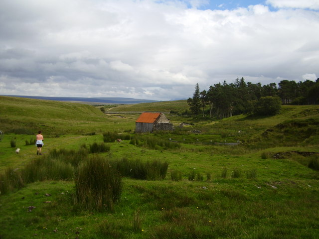 Near Altanduin, Borrobol Estate