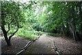SU9284 : Nashdom Abbey - Woodland path by John Salmon