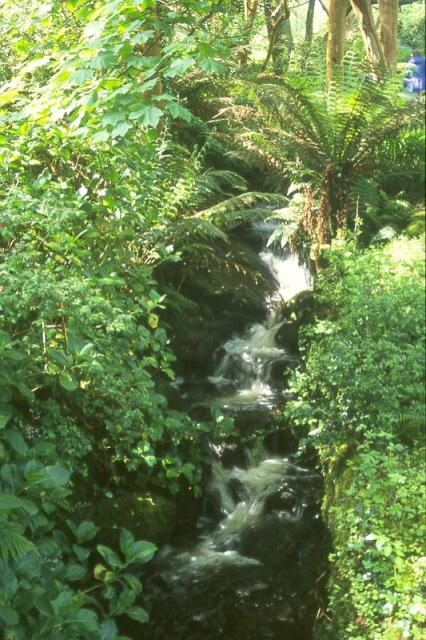 Waterfall in Glanleam Garden