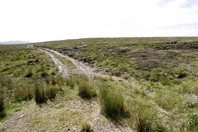 Hill Track near Lochan Ealach