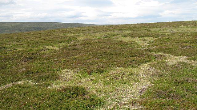 Plateau above Bruthach nan Creagan