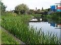 SK0401 : Barnfield Bridge - Daw End Canal by Adrian Rothery