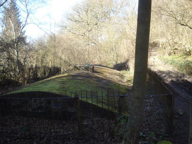 Underground reservoir in News Wood