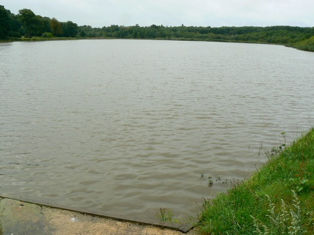 Braydon Pond, North Wiltshire