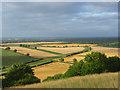 SU5057 : Downland view, Kingsclere : Week 30