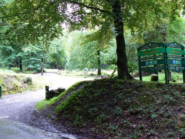 Llantrisant  Forest