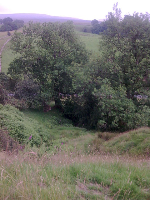 Bottom of Sally Brow