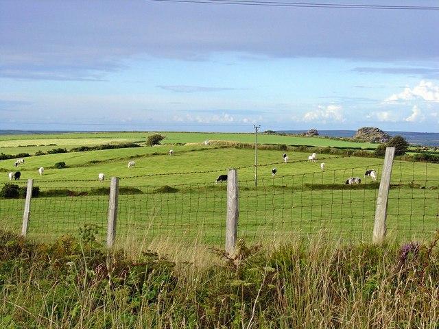 Fields near Penlan Trehaidd, Brynberian